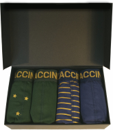 Zaccini 4-pack: Gold Star Stripe Box