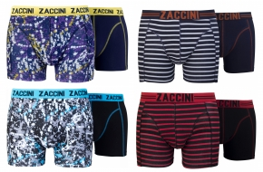 Zaccini 8-pack: Painted Stripes