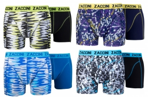 Zaccini 8-pack: Painted Curves