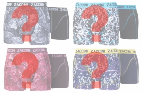 Zaccini 8-pack: MysteryPack