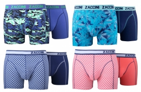 Zaccini 8-pack: Folliage Triangle