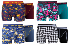 Zaccini 8-pack: Splash